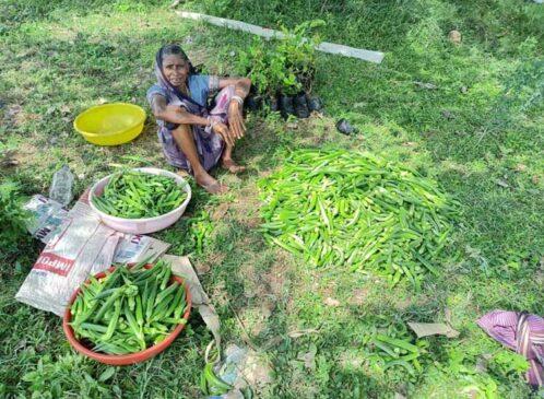 रायपुर: स्वसहायता समूह अमलडीहा की महिलाएं बढ़ रही हैं स्वावलंबन की ओर